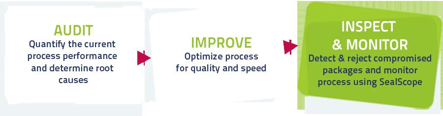 audit-improve-inspect